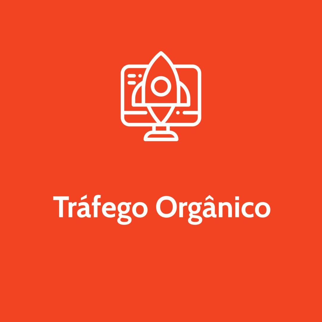 trafego orgânico